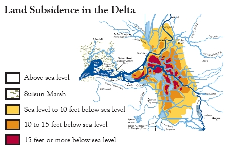 Land Subsidence in the Delta